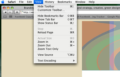 view source navigation in safari