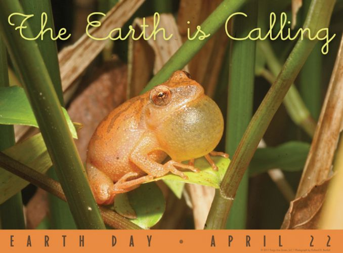 Earth is Calling - Earth Day poster with photograph by Richard Bartlett
