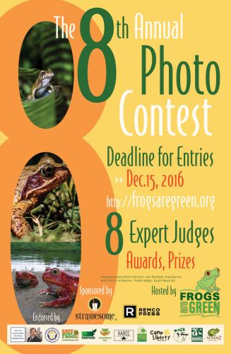 8th-photo-contest-poster-1000pxf