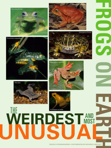 Weirdest and Most Unusual Frogs on Earth - poster with photographs by Richard Bartlett.