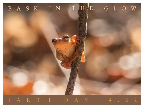 Earth Day Poster Design - Photograph by Wes Deyton