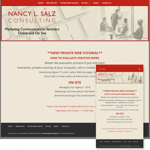 Salz Consulting - new website design by Susan Newman