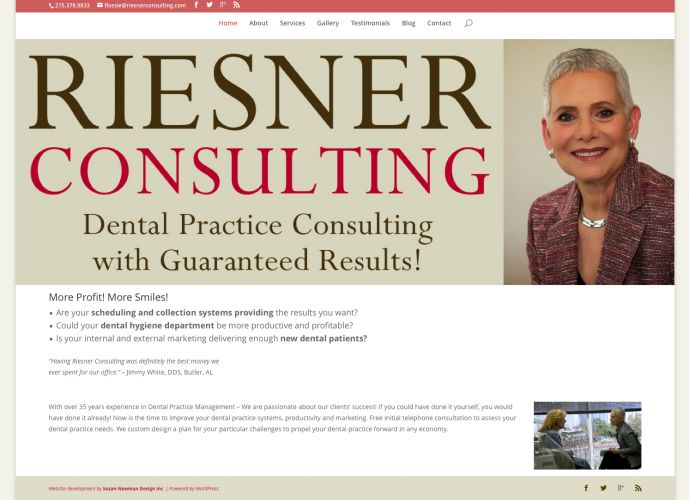 Riesner Consulting - new website design by Susan Newman
