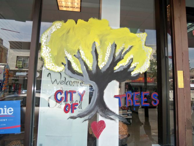 City-of-Trees-Window-Painting-Central-Ave-JC-74