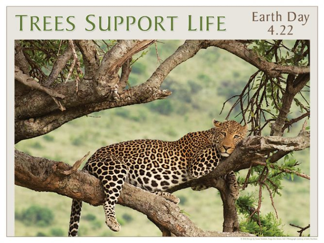 Trees Support Life - Earth Day poster with photograph by Julie Steelman