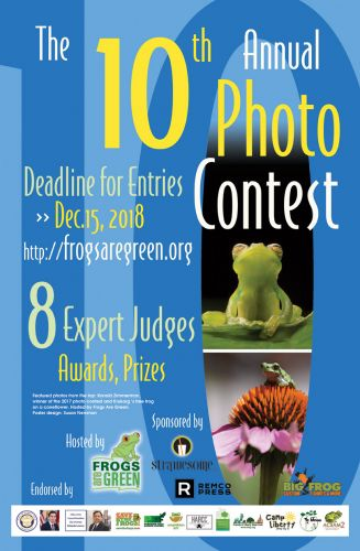 10th-photo-contest-poster-1200px