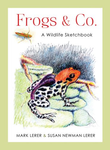 Frogs & Company by Mark Lerer and Susan Newman Lerer